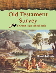 Create a High School Class like Old Testament Survey Class by Meredith Curtis