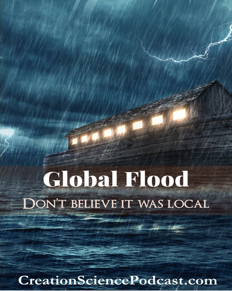 Global Flood | As we talk about the Genesis Global Flood and its significance, it is important to, first of all, determine if it was a global or a local event. Did the Flood cover the whole earth or just Mesopotamia? | #podcast #creationpodcast