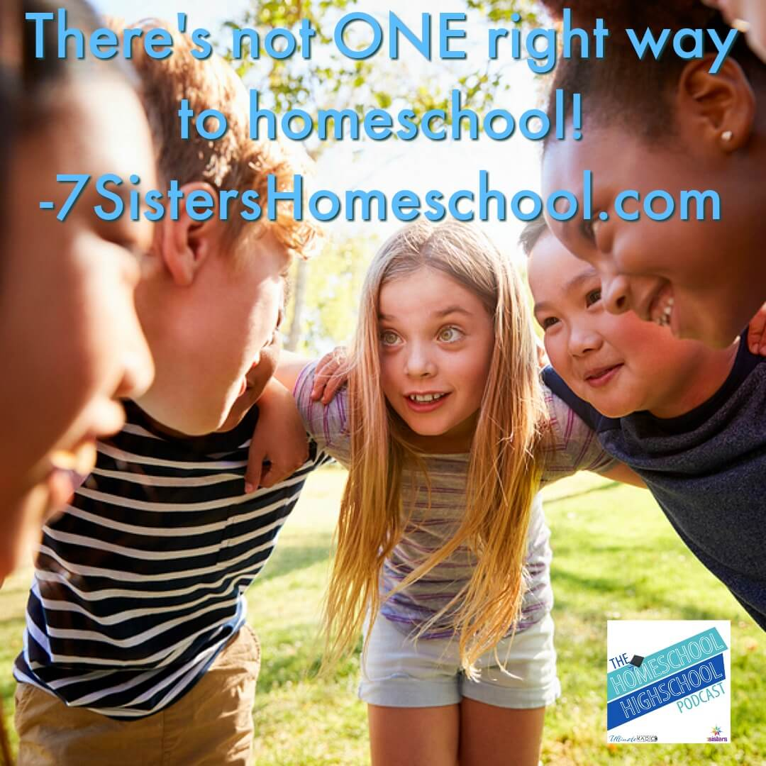 There's not ONE right way to homeschool. 7SistersHomeschool.com and Homeschool Highschool Podcast remind you that every homeschooler is different with varied gifts and goals. You can find the best way for your individual teen to homeschool high school! #HomeschoolHighSchool