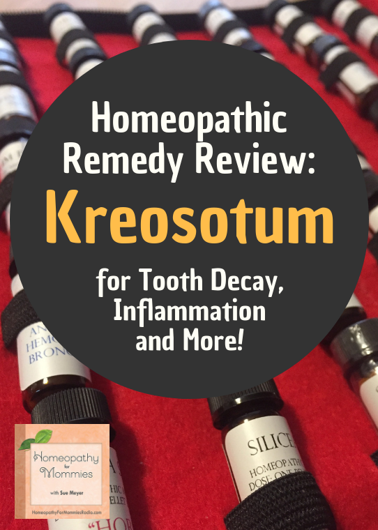 This week on the Homeoapthy for Mommies, Sue discusses the remedy Kreosotum for tooth delay in children, inflammation and more! #homeopathy