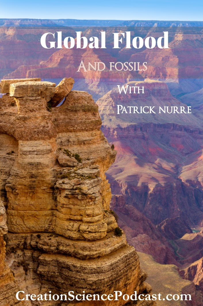 Rock Strata and Fossils | scientific basis of this and key information. | #podcast #creationscience