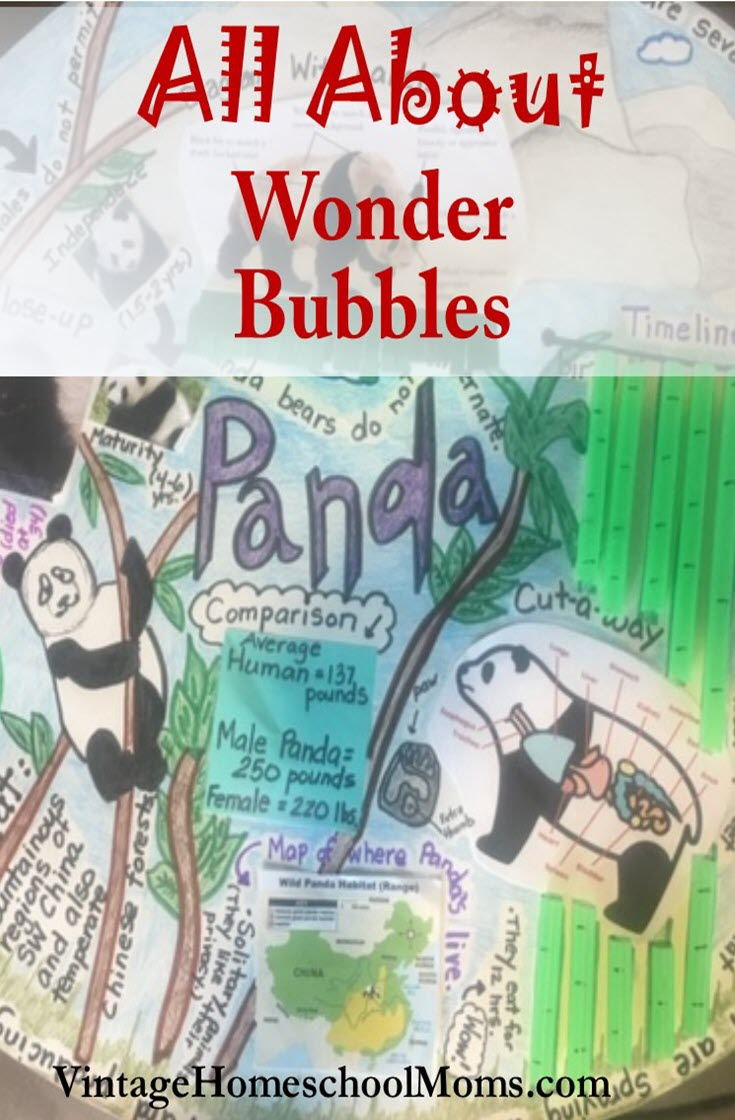 Wonder Bubbles | Wonder bubbles are a cornerstone of project-based learning, and I knew nothing about them until my sister-in-law, an amazing teacher sent me samples of her child's work! I was enthralled and asked her for an interview. | #podcast #homeschoolpodcast #wonderbubbles