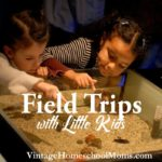 Field Trips with Little Kids