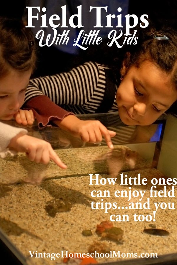 Field Trips with Little Kids | Field trips with little kids can be learning opportunities and springboards for wonderful memories. In this episode, Felice Gerwitz and Autumn McKay discuss great field trips for little ones as well as some helpful ideas and tips. | #podcast #homeschoolpodcast #fieldtrips
