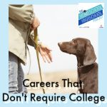 HSHSP Ep 186: Career that Don't Require College, Interview with Susan Stewart