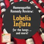 Remedy Review: Lobelia Inflata