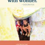 Wisdom Wonder Project   #wisdomwonderproject #LisaAnnDillon