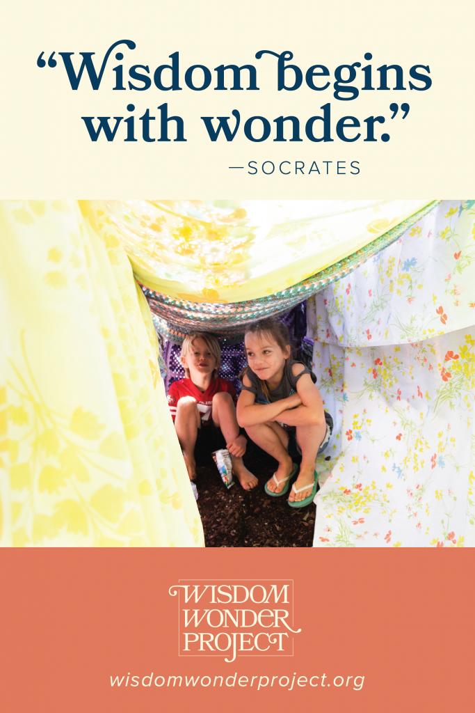 Wisdom Wonder Project | #wisdomwonderproject #LisaAnnDillon