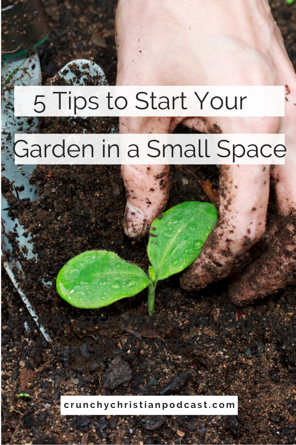 Join Julie Polanco on this episode of Crunchy Christian Podcast as she shares how to start a garden in a small space.