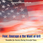 Fear, Courage and a Time of Grit: Remedies for Anxiety Related to Stress