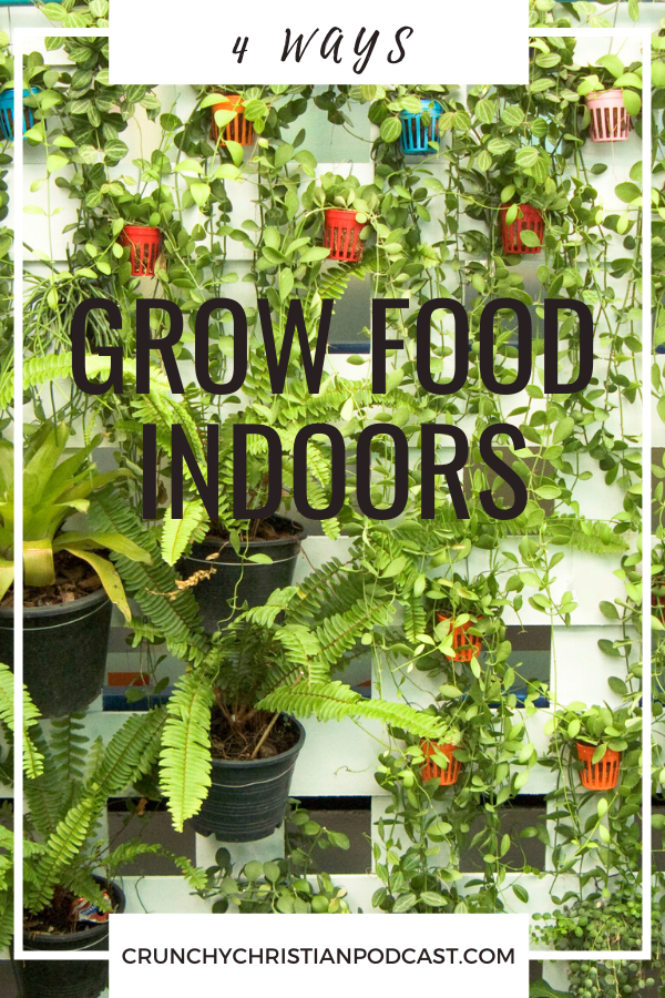 Today, on Crunchy Christian Podcast, Julie talks about four ways for food to grow indoors. Check out these methods and see if one of them might work for you!