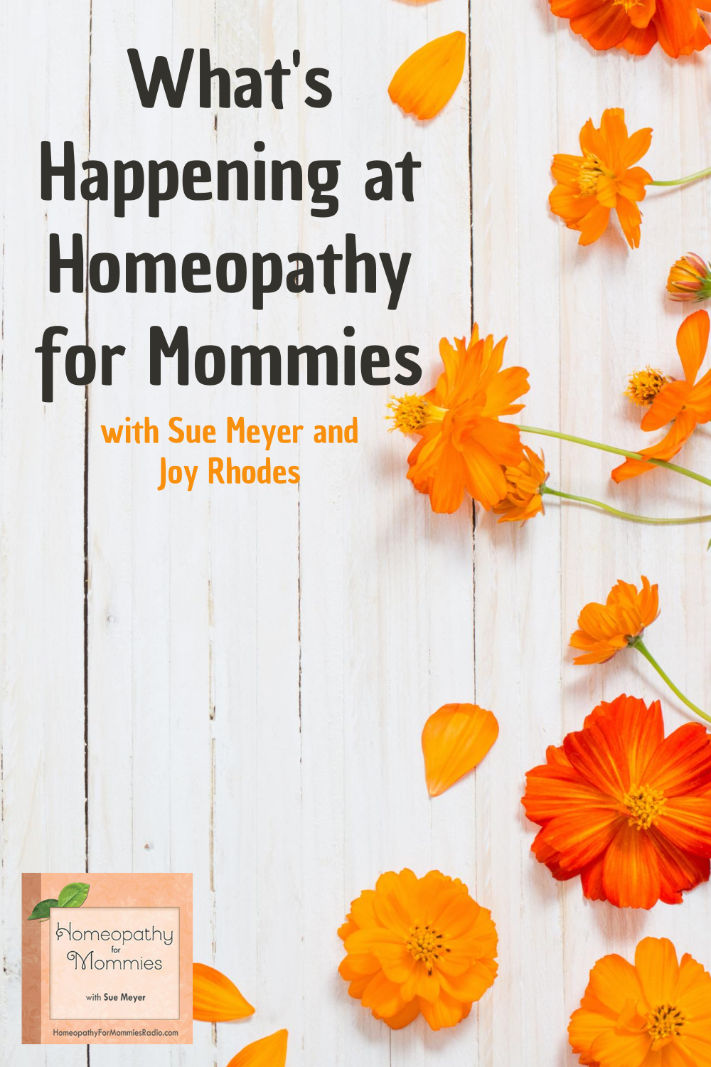 Join Sue as she sits down with her technical assistant Joy Rhodes to talk about all the recent changes in the online world at Homeopathy for Mommies!