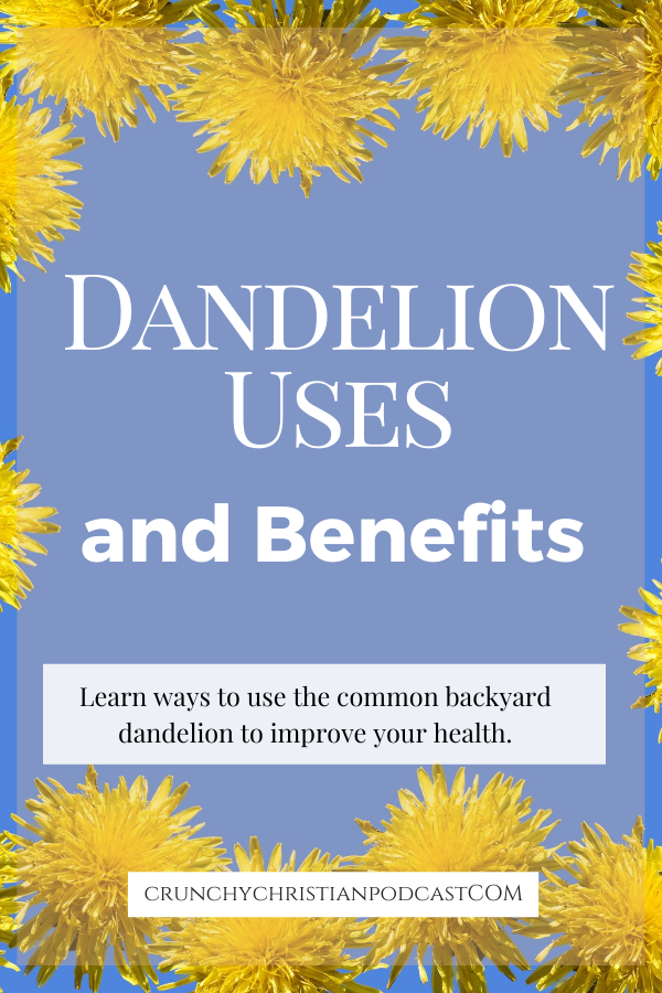 Join Julie Polanco on this episode of Crunchy Christian Podcast as she discusses dandelion uses and benefits.