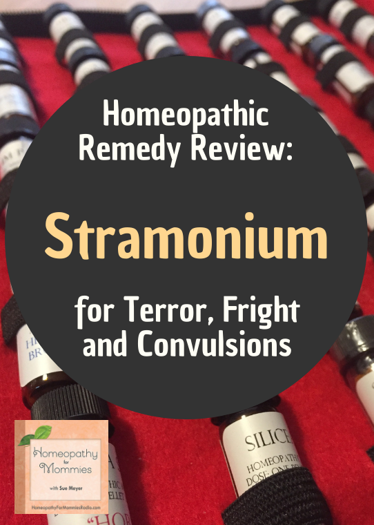 Stamonium Spotlight: A favorite Children's remedy for both Fever and Fright