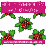 Holly Symbolism and Benefits