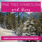 Pine Tree Symbolism and Uses