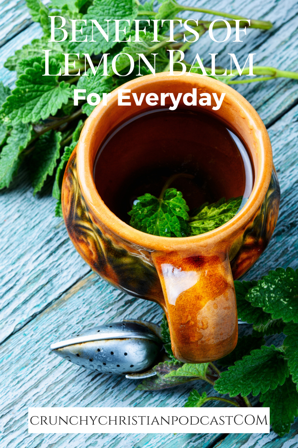 The benefits of lemon balm for the entire family are worth the effort. Join Julie on Crunchy Christian Podcast today as she talks about this wonderful, mild herb.