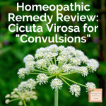 """Homeopathic Remedy Review: Cicuta Virosa for """"Convulsions"""""""