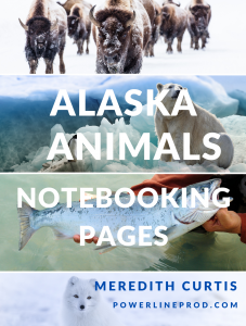 Alaska Animals Notebooking Pages by Meredith Curtis