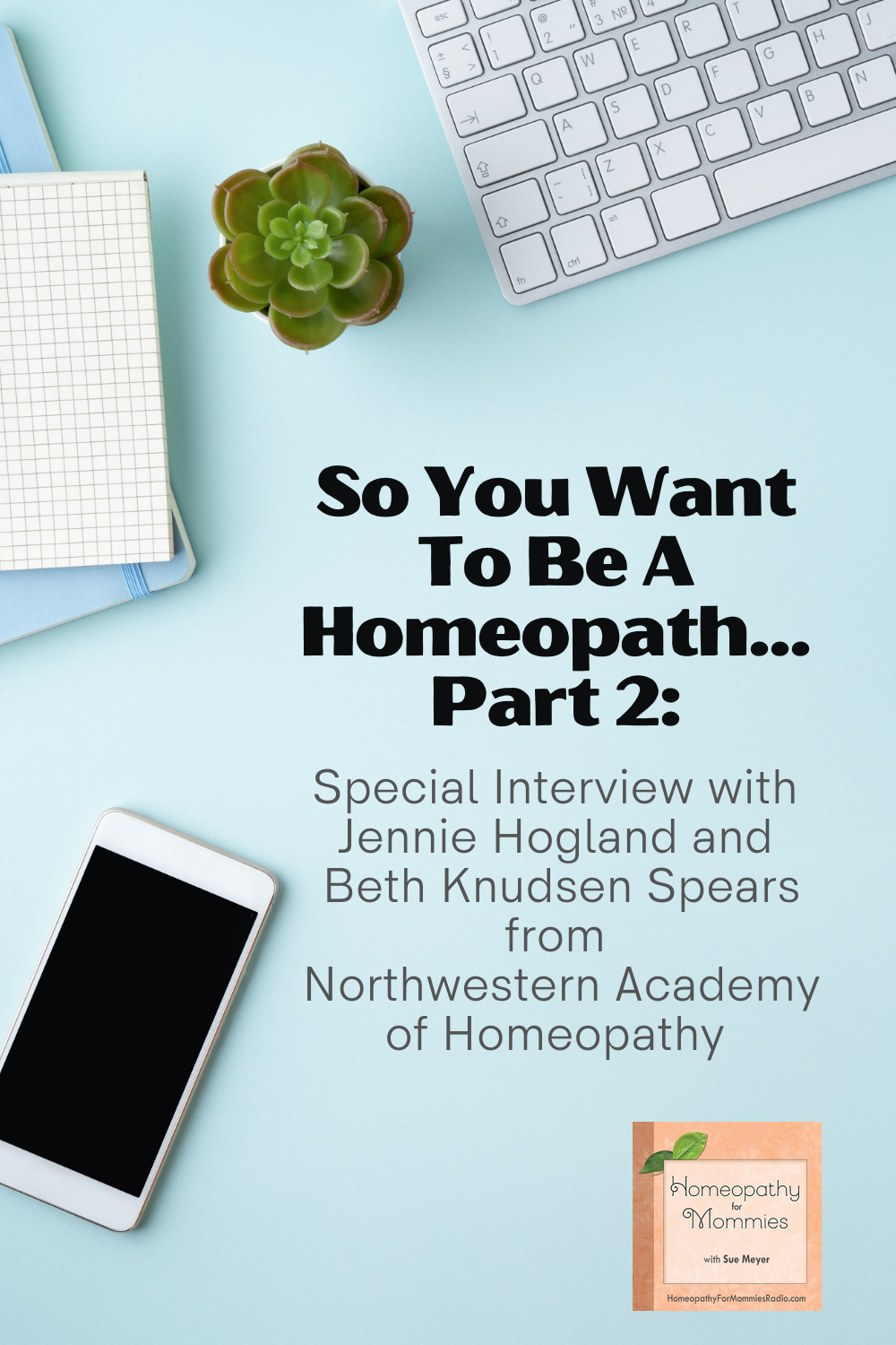Welcome to part 2 in the Homeopathy School Options series! In this episode we are speaking with Jennie Hogland and Beth Knudsen Spears from Northwestern Academy of Homeopathy.