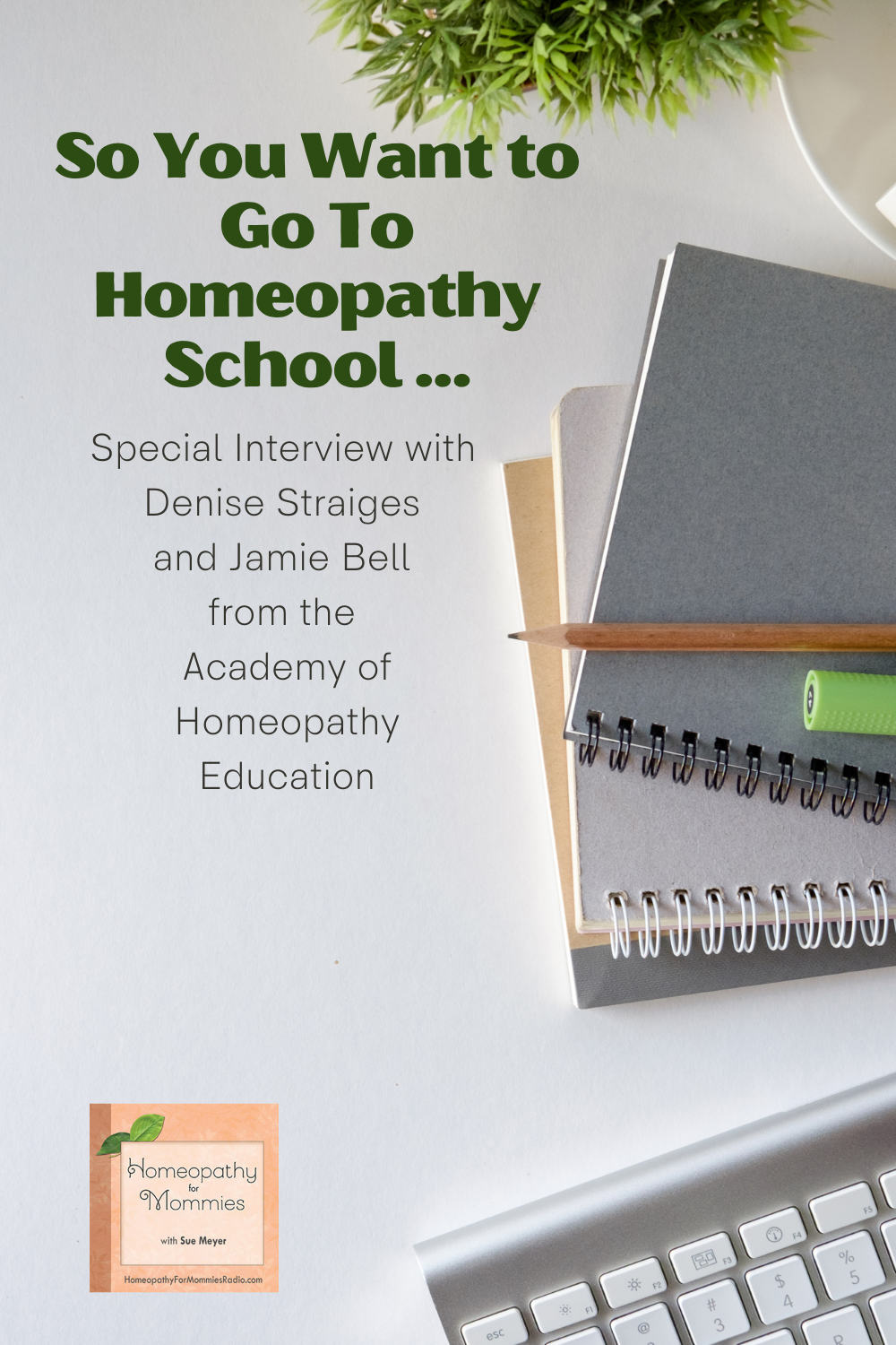 This week on Homeopathy for Mommies, Sue interviews two special guests from the Academy of Homeopathy Education about Homeopathy School Options for those who want to go to school to become a homeopath.
